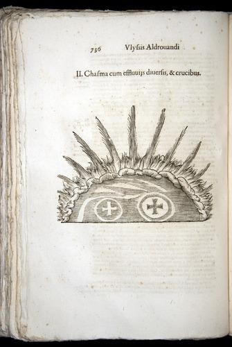 Image of Aldrovandi-1570-0736