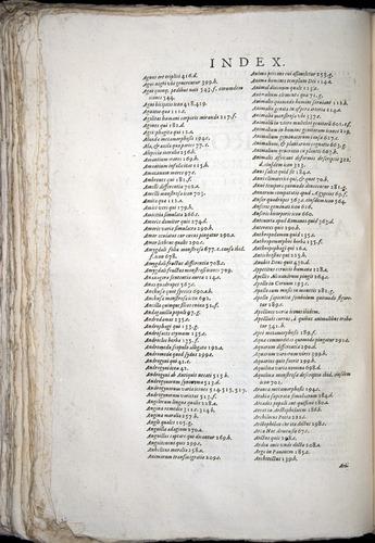 Image of Aldrovandi-1570-yy02