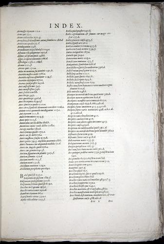 Image of Aldrovandi-1570-yy03