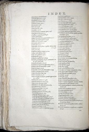 Image of Aldrovandi-1570-yy06
