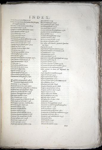 Image of Aldrovandi-1570-yy07
