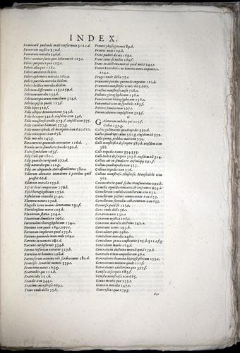 Image of Aldrovandi-1570-yy09