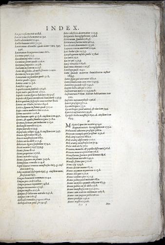 Image of Aldrovandi-1570-yy15