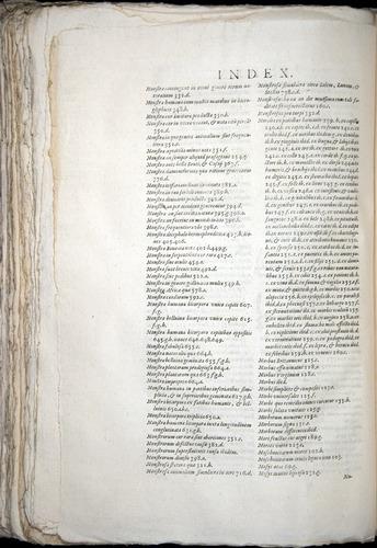 Image of Aldrovandi-1570-yy18
