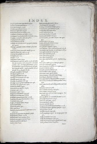 Image of Aldrovandi-1570-yy23