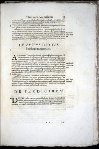 Image of Aldrovandi-1570-z015