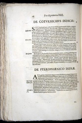 Image of Aldrovandi-1570-z016