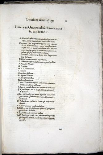 Image of Aldrovandi-1570-z021