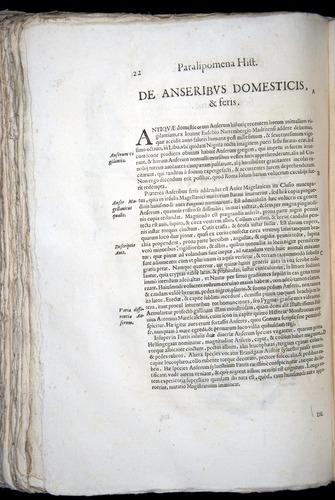 Image of Aldrovandi-1570-z022