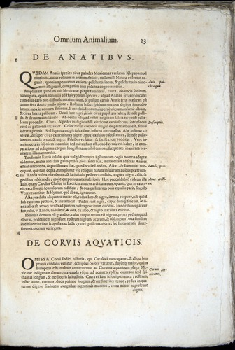 Image of Aldrovandi-1570-z023