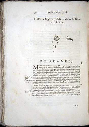 Image of Aldrovandi-1570-z030