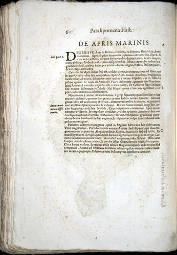 Image of Aldrovandi-1570-z062