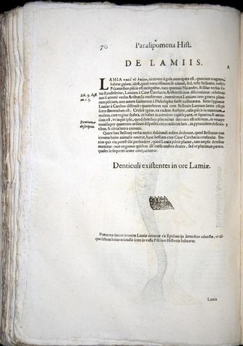 Image of Aldrovandi-1570-z070