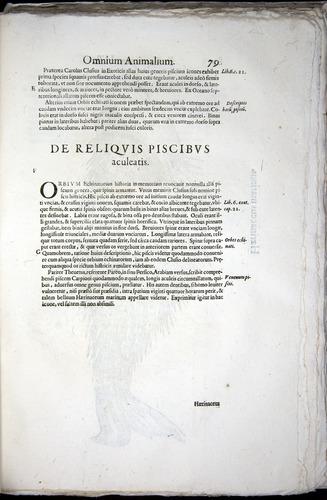 Image of Aldrovandi-1570-z079