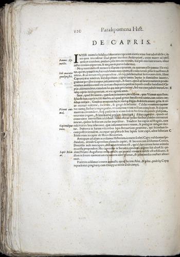Image of Aldrovandi-1570-z120