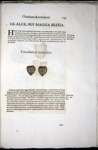 Image of Aldrovandi-1570-z129