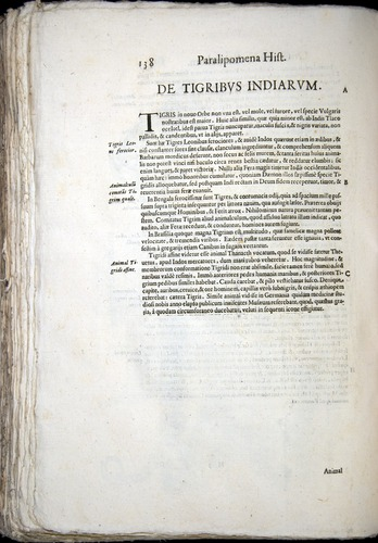 Image of Aldrovandi-1570-z138