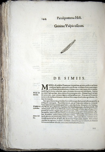 Image of Aldrovandi-1570-z144