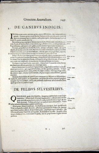 Image of Aldrovandi-1570-z149