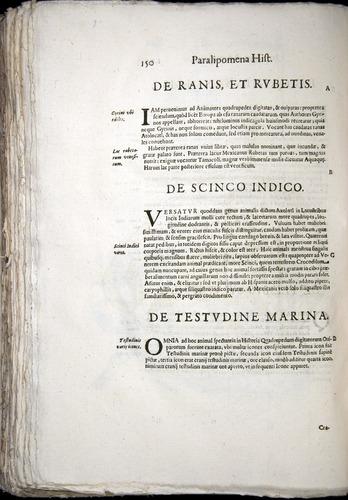 Image of Aldrovandi-1570-z150