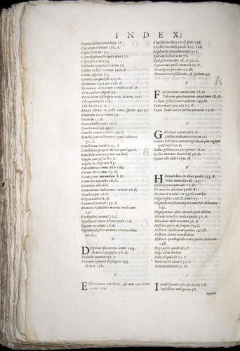 Image of Aldrovandi-1570-zzz2