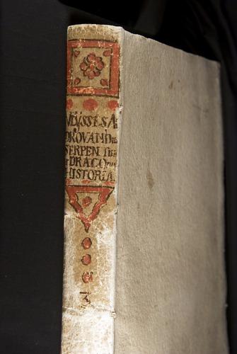 Image of Aldrovandi-1640-000-bk