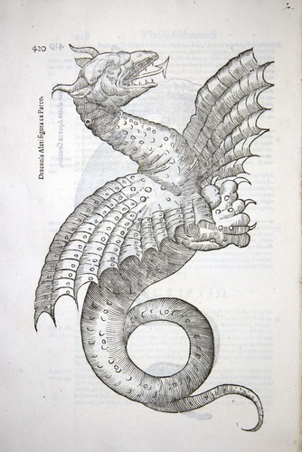 Image of Aldrovandi-1640-420