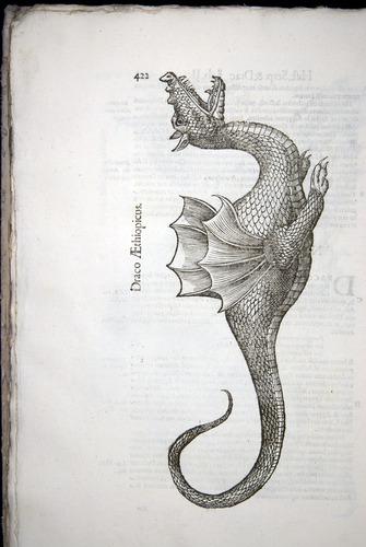 Image of Aldrovandi-1640-422
