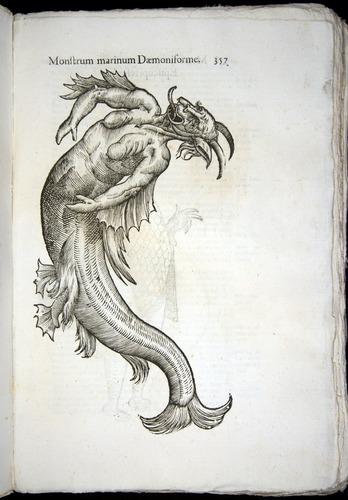 Image of Aldrovandi-1642-357