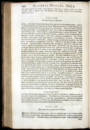 Image of DellaPorta-1658-00242