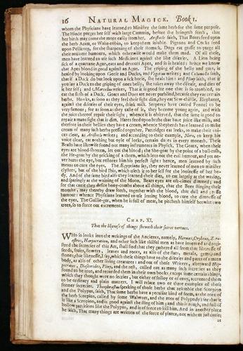Image of DellaPorta-1658-016