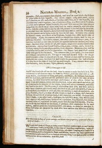 Image of DellaPorta-1658-034