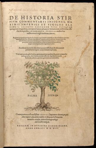 Image of Fuchs-1542-000-tp