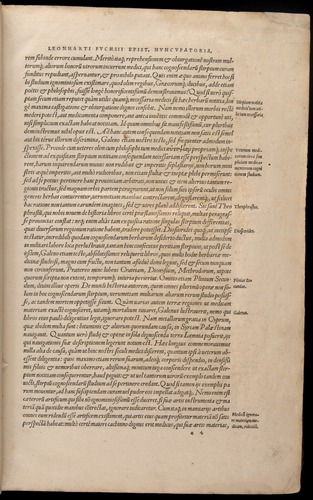 Image of Fuchs-1542-000-za04r