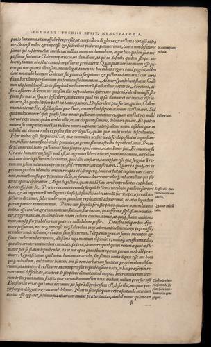 Image of Fuchs-1542-000-zb01r
