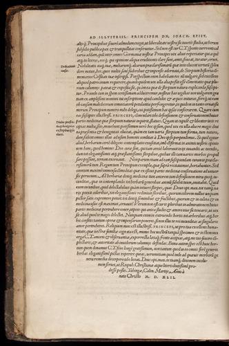Image of Fuchs-1542-000-zb02v