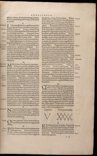 Image of Fuchs-1542-000-zb04r