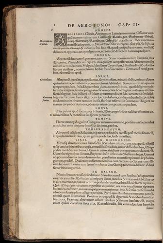 Image of Fuchs-1542-008