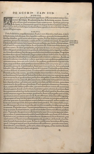 Image of Fuchs-1542-013