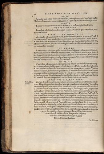 Image of Fuchs-1542-014