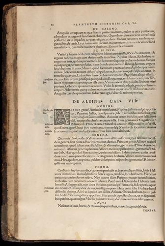 Image of Fuchs-1542-020