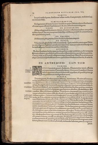 Image of Fuchs-1542-024