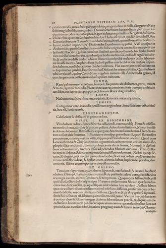 Image of Fuchs-1542-028