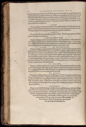 Image of Fuchs-1542-037