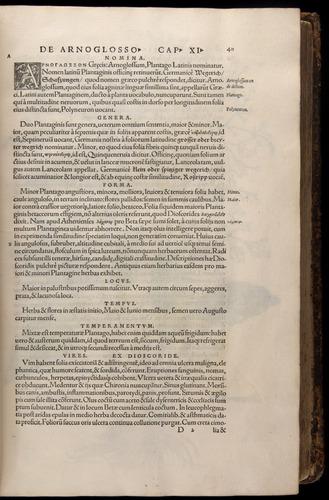 Image of Fuchs-1542-040