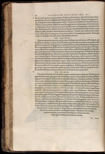 Image of Fuchs-1542-041