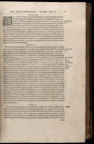 Image of Fuchs-1542-048