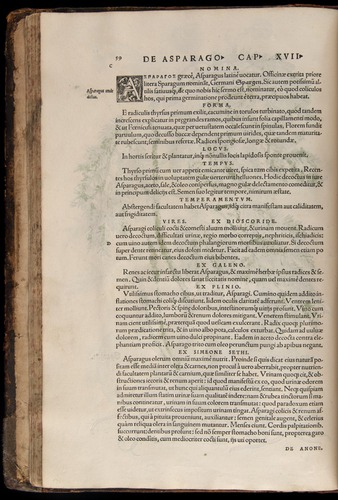 Image of Fuchs-1542-059