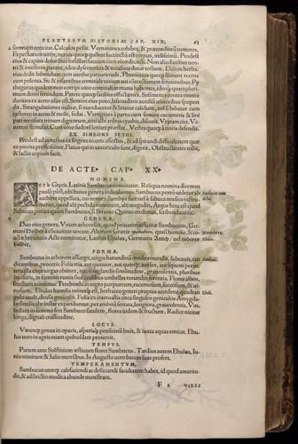 Image of Fuchs-1542-063