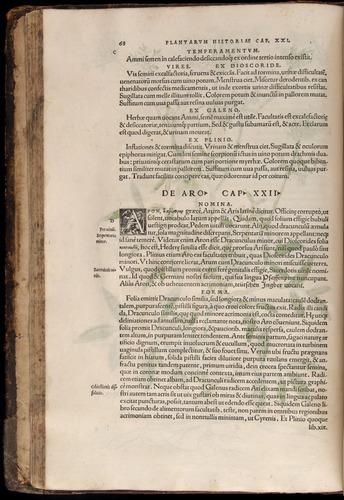 Image of Fuchs-1542-068